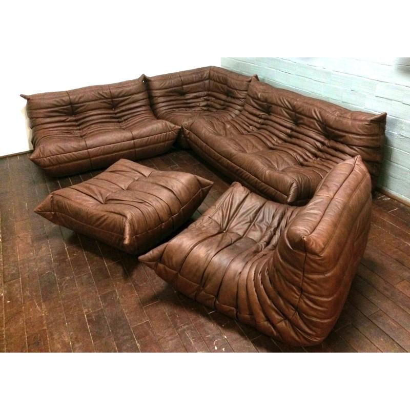 Michel Ducaroy Ligne Roset Brown Leather